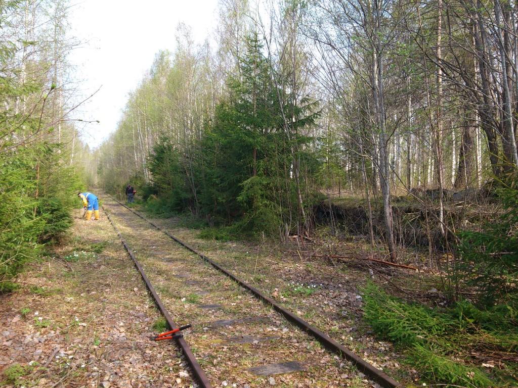 Slyröjning av linjen mot Bålsjöverket